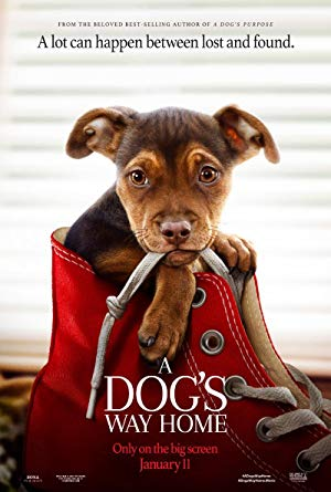 A Dog's Way Home full movie streaming