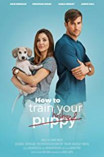 How To Pick Your Second Husband First full movie streaming